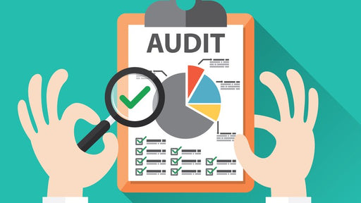 business audit