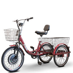 EWheels EW-29 (Electric Trike), Perfect For A Stroll In The Park Or Taking Your Pet Along