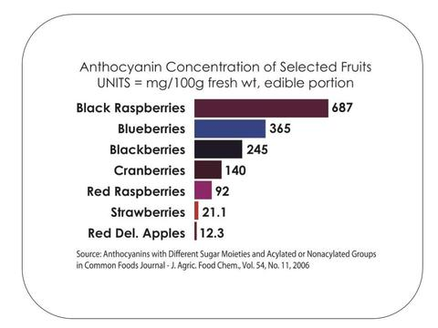 Berrihealth Black Raspberry powder Anthocyanin chart