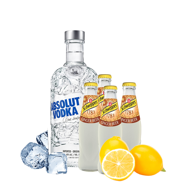 Moscow Mule Box con Absolut Vodka - Degustalo