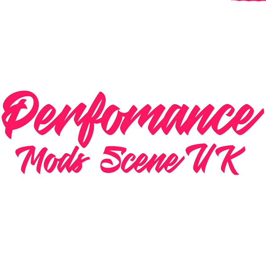 Perfomance Mods Scene Logo Hoodie / Hooded Top