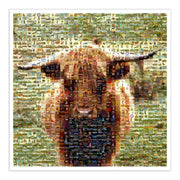 Highland cow art