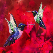 Humming Bird Play