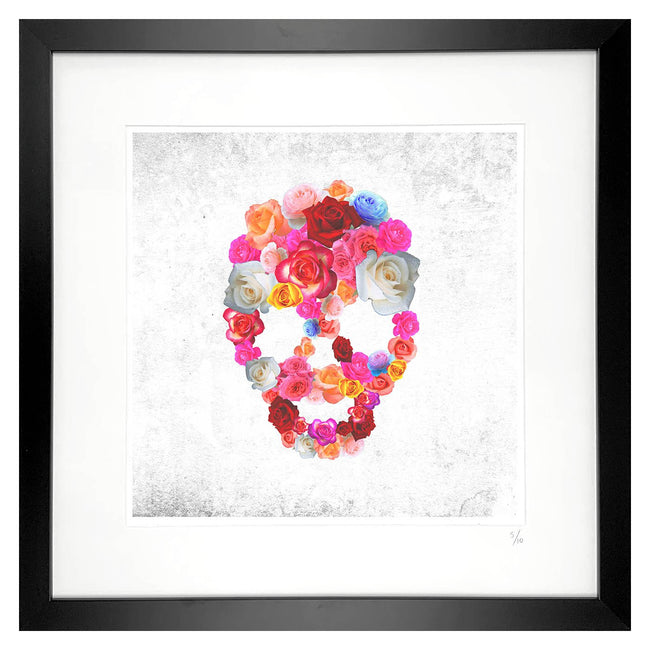 framed skull artwork