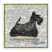 Scottish Terrier artt