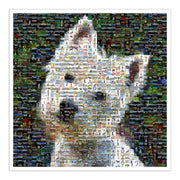 West Highland Terrier art