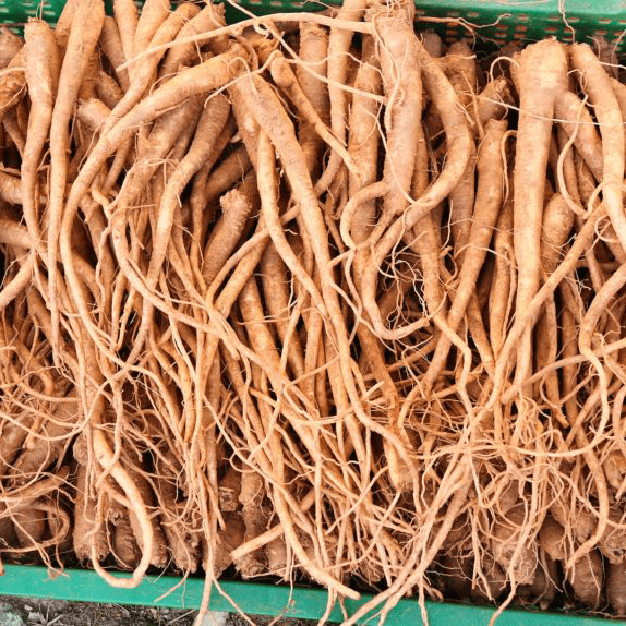 Ashwagandha Root May Help Improve Sleep Quality