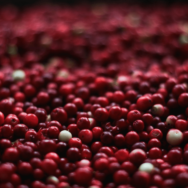 Cranberries Fruit Fresh