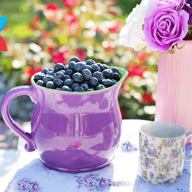 Blueberry Drink Pitcher