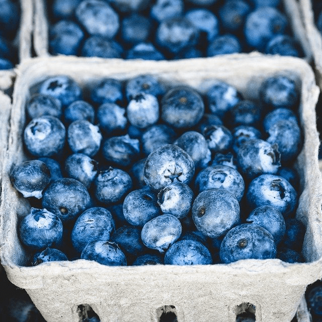 Blueberries Berries Fresh Carton