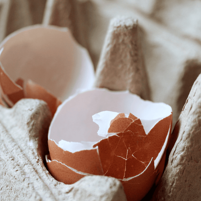 Natural Eggshell Membrane May Help Comfort Joints