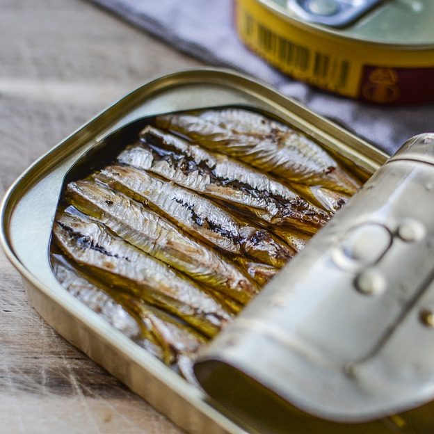Can of Fish Sardines In Oil Omega3 Omega-3
