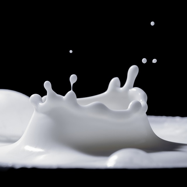 Milk Dairy Probiotic Amino Acid Absorption