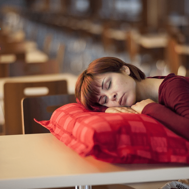 Sleeping on Desk Pillow School