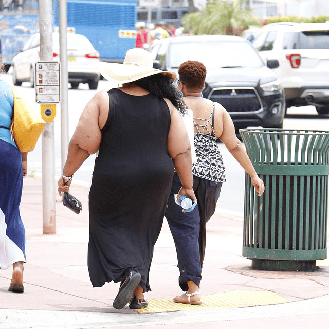 Obese Overweight Women Obesity