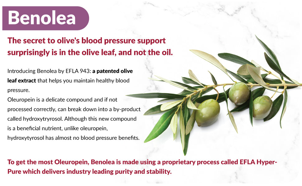 Benolea Olive Leaf Extract Benefits