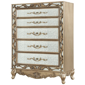 Acme 23796 Orianne Gold Wood & Mirrored Finish Chest