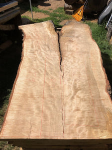 Live Edge Slabs. Curly Silver Maple. Live Edge Tables from Boise Trees.