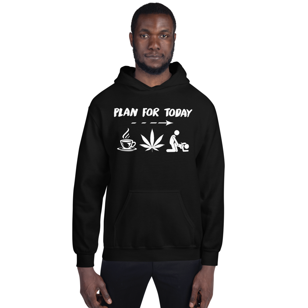 Plan for today hoodie