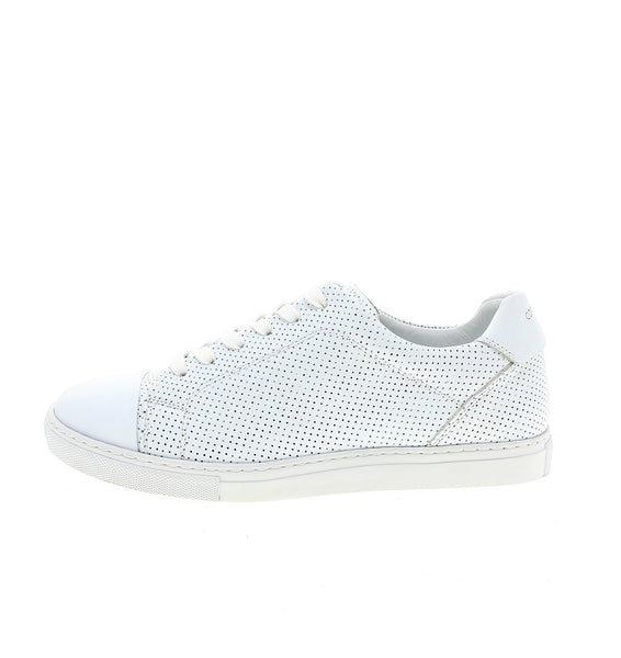 white perforated men sneaker | camino 71