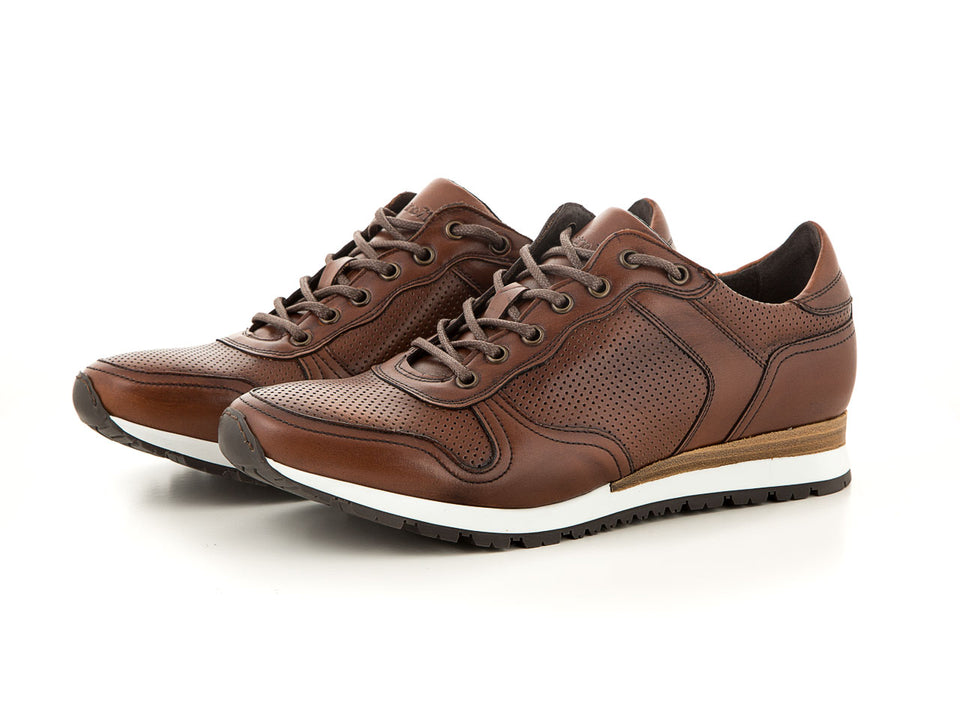 Elegant and sporty brown sneaker for men| camino71