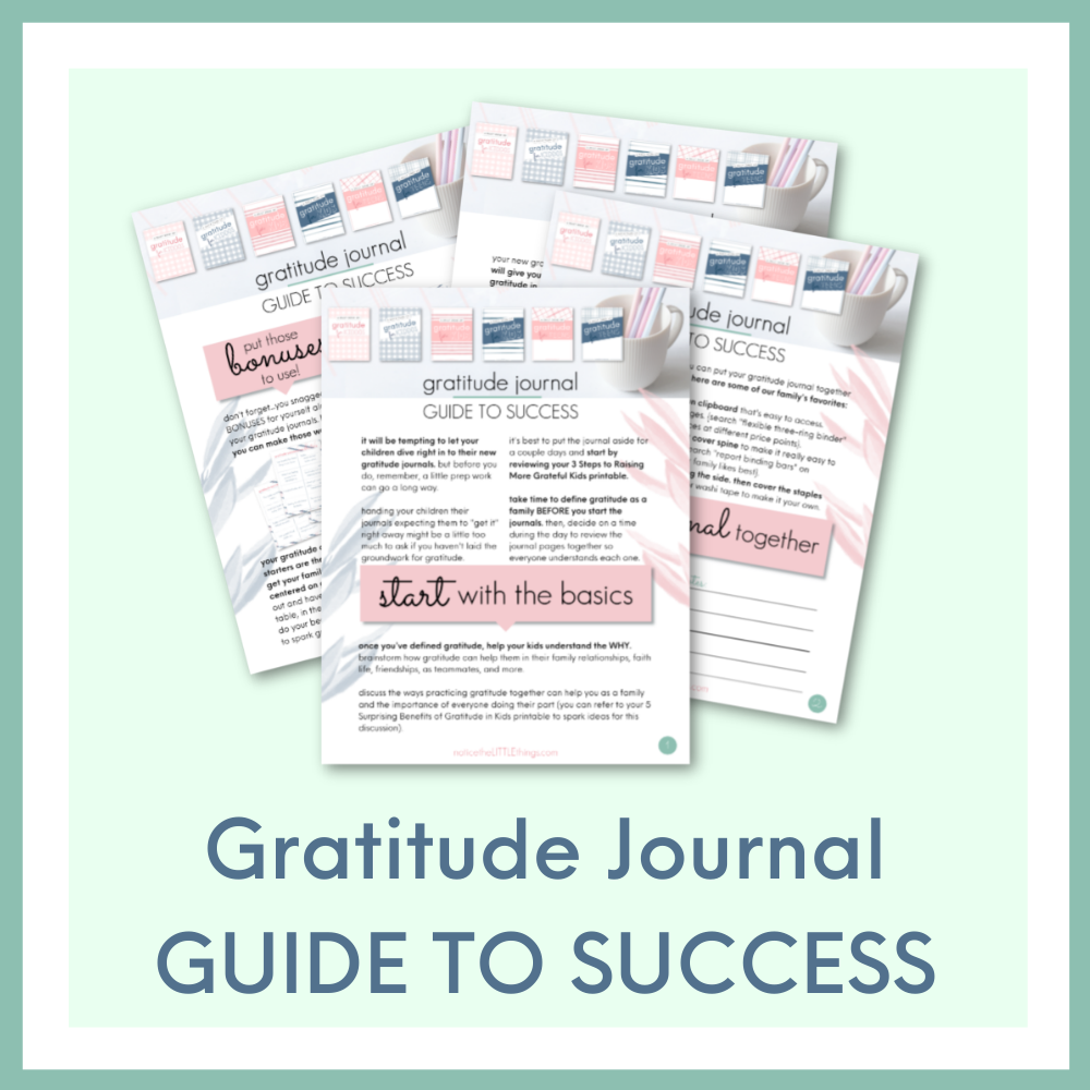 Kids Gratitude Single Journals GUIDE TO SUCCESS - $9 Value