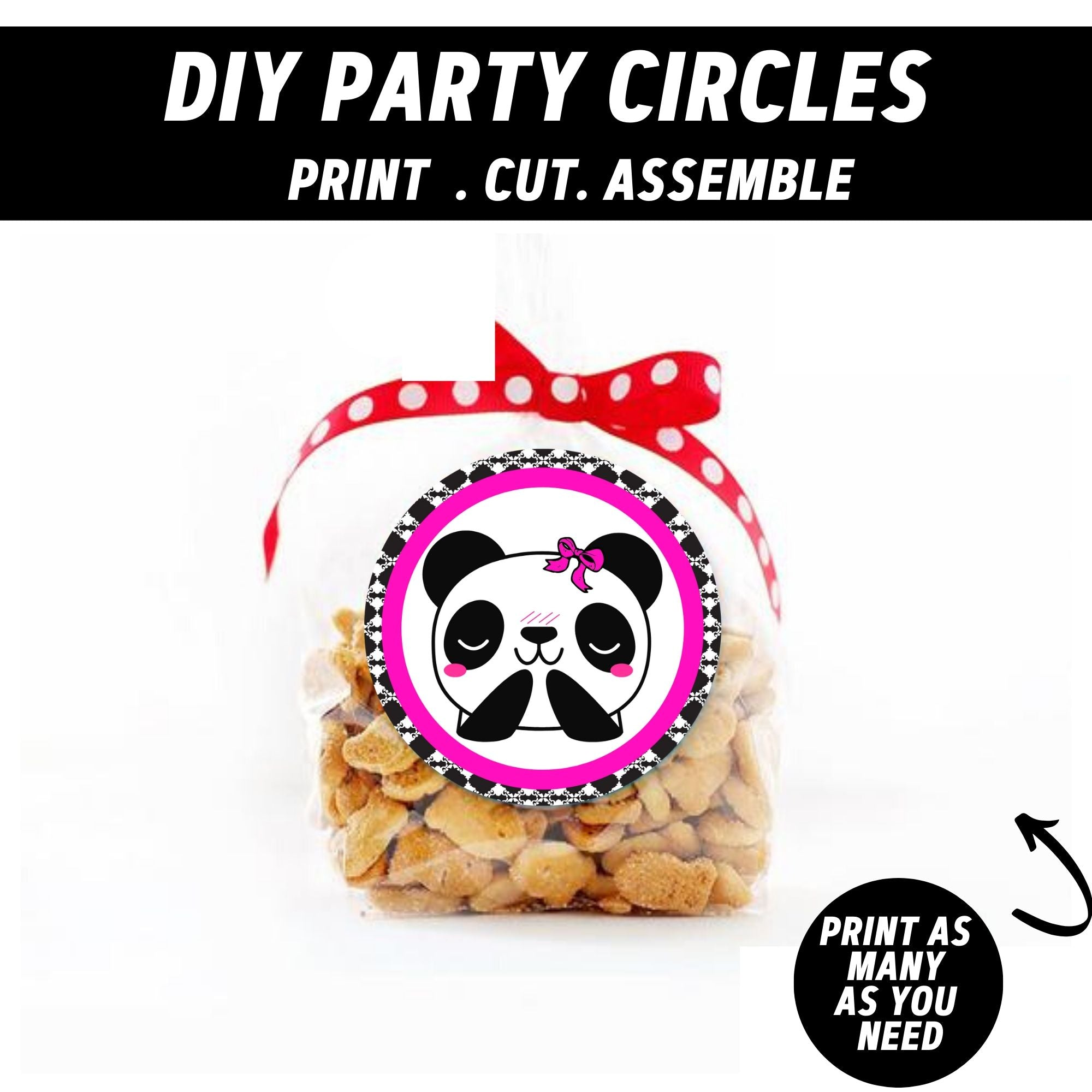 Party Like a Panda Girl Birthday Party Package
