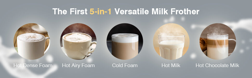 5 in 1 milk frother