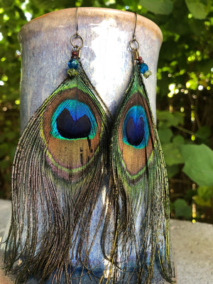 Peacock Feather Earrings