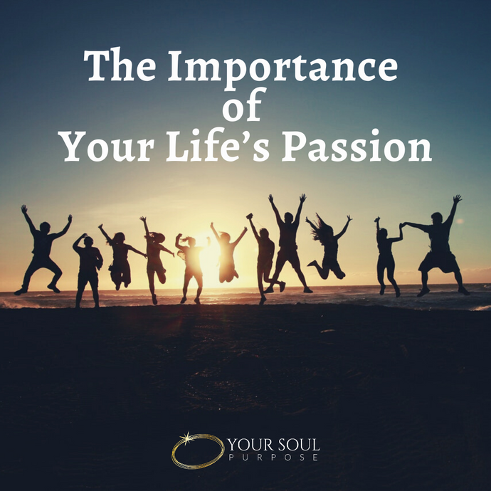 The Importance of Your Life's Passion