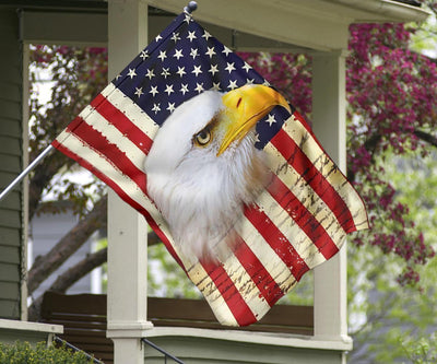 Bald Eagle America Flag