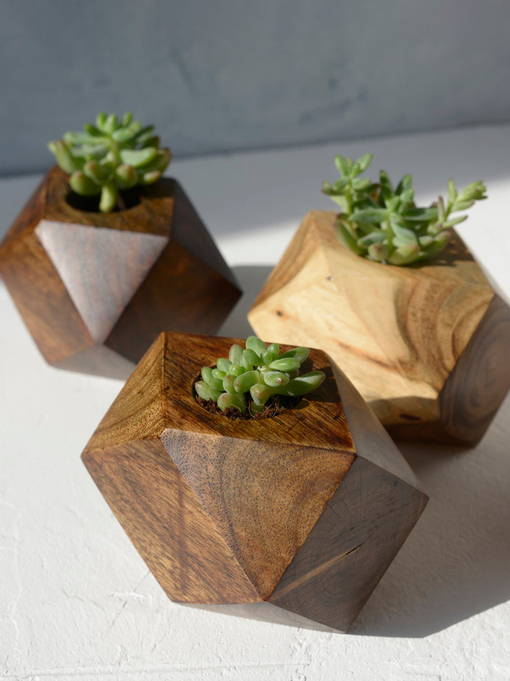 Hexagon Acacia Wood Planter