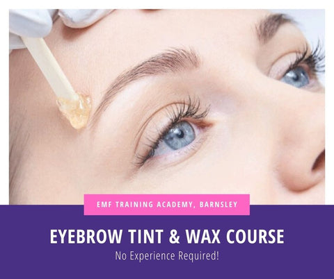 Eyebrow Tint & Wax Course