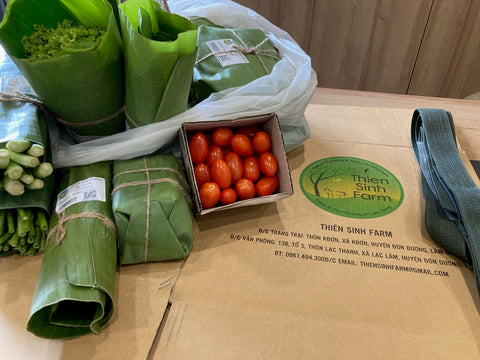 vegetables with ECO BOX