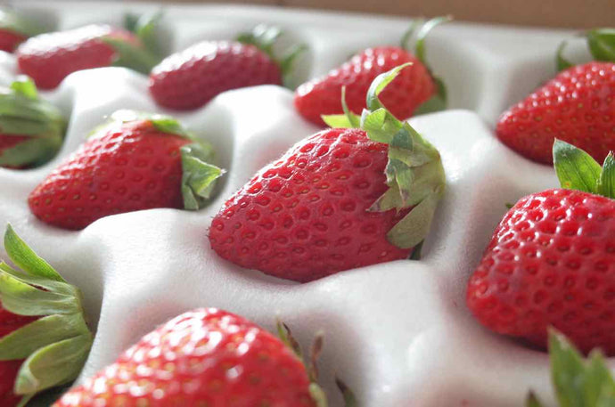 80 Thu A lottery ticket for Mr Arai's Strawberry / B size 1 box of 300-330g
