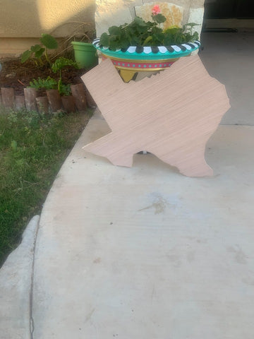 "BLANK 24"" Texas Door Hanger"