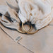 Moon Moon Ring Sling - Stone Moon - Pearls & Swines