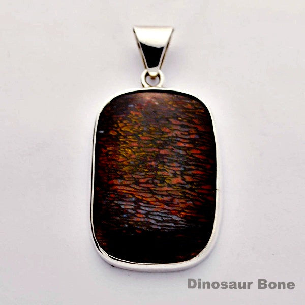 Dinosaur Bone one of a kind