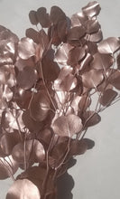 Load image into Gallery viewer, Silver Dollar Eucalyptus- Rose Gold