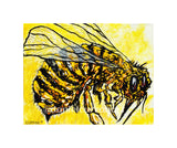 "5""x 7"" Yellowjacket Print (Matted)"