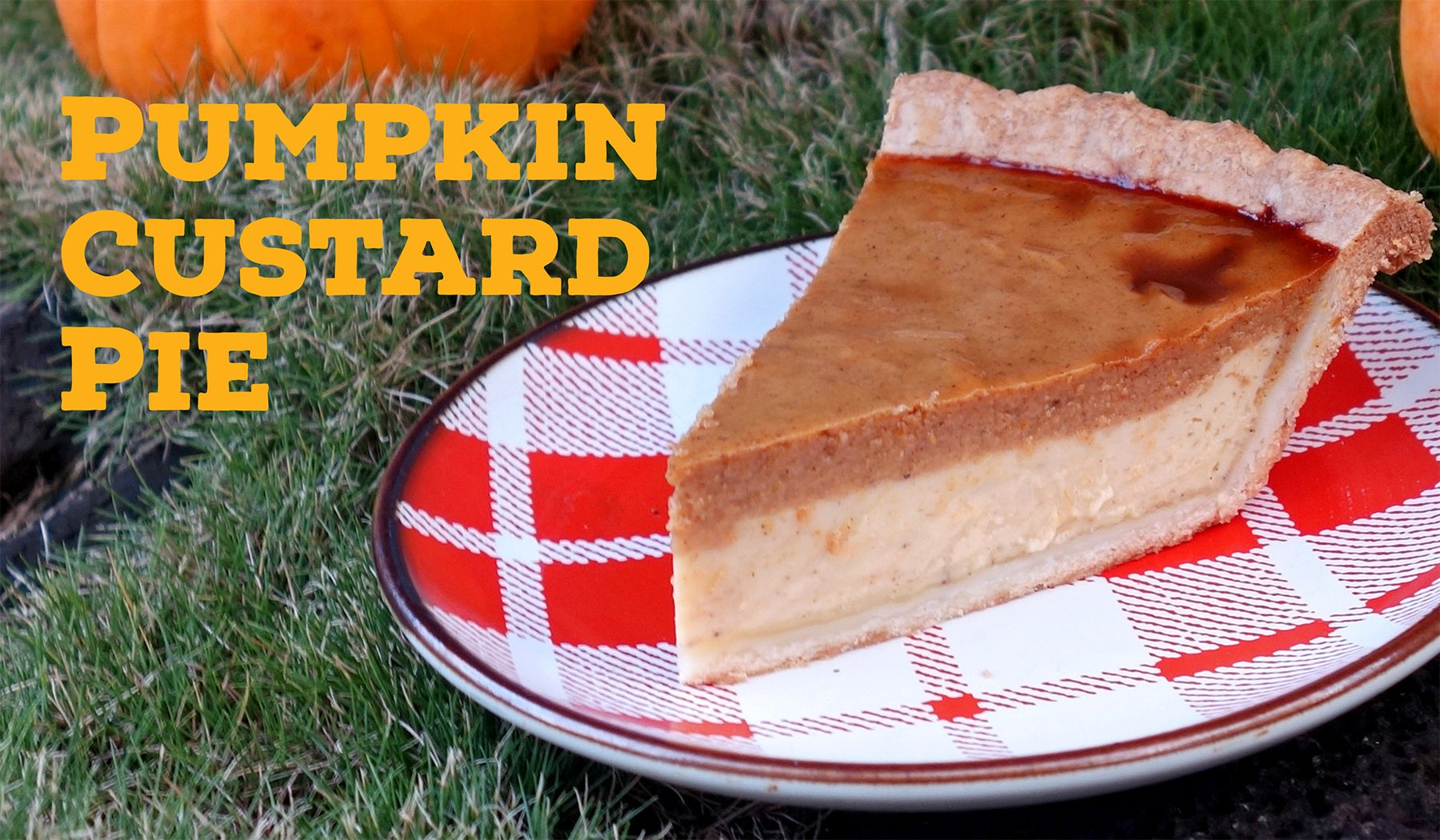 Thanksgiving Pumpkin Custard Pie