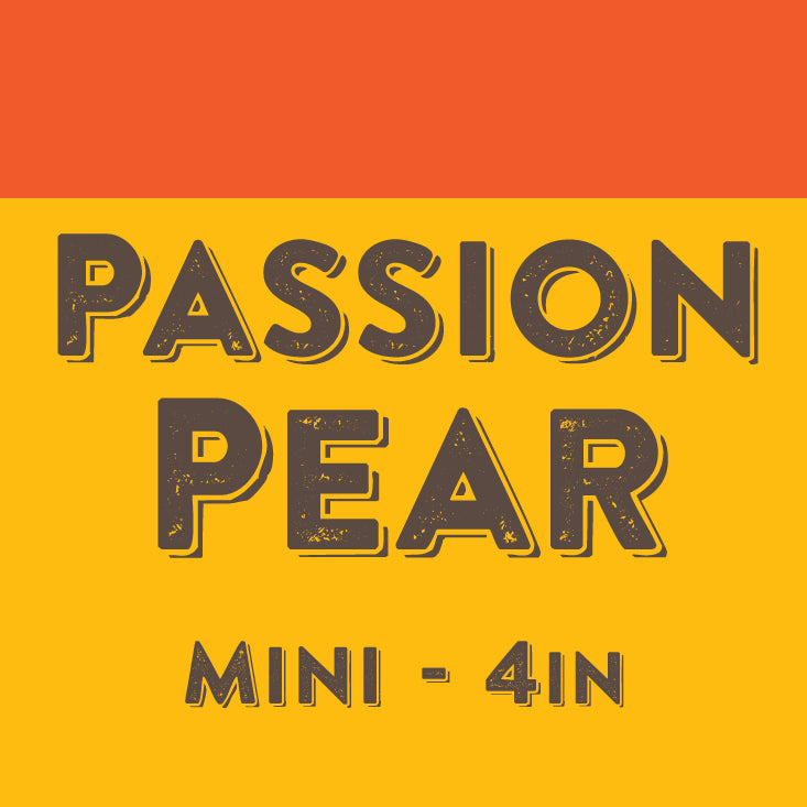 Passion Pear - Mini