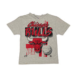 Vintage Chicago Bulls Hooded Graphic Tee