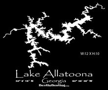"Load image into Gallery viewer, Lake Lanier T-shirt ""LAKE LIFE""  Sketch Lake Lanier"