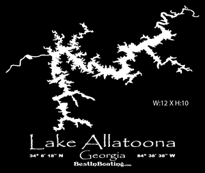 "Lake Lanier T-shirt ""LAKE LIFE""  Sketch Lake Lanier"