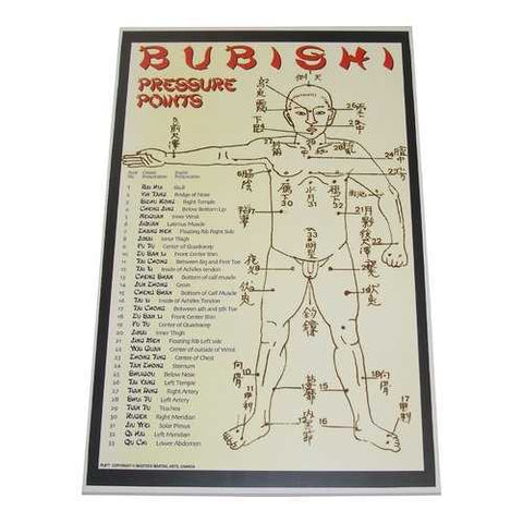 Bubishi Chinese Pressure Points dim mak martial art Display Wall Plaque 11x17