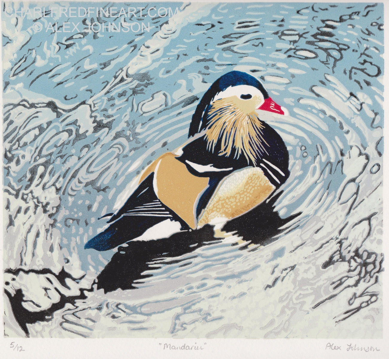 'Mandarin' Duck- Animal Art