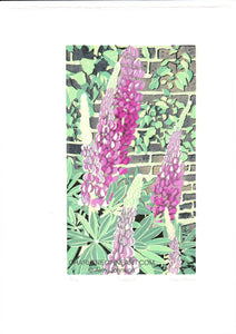 'Lupins' - Flower Wall Art