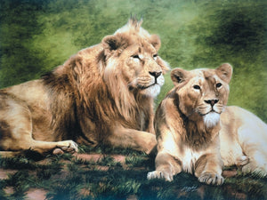 Asiatic lion with lioness wildlife art print animal large wall art artist J. Gaylard.