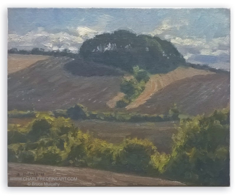 Fields with Hilltop Wood landscape canvas painting by Bruce Mulcahy RSMA.